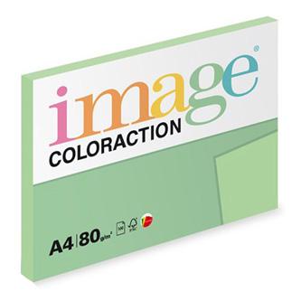 Xerografický papír Coloraction, Jungle, A4, 80 g/m2, světle zelený, 100 listů, vhodný pro inkoustový tisk